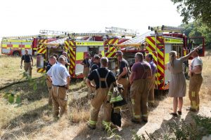 discarded-disposable-barbecue-caused-fire-in-old-park-hotel-woods-in-ventnor