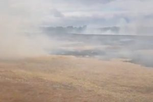 fire-crews-called-to-corn-field-well-alight-in-west-malling
