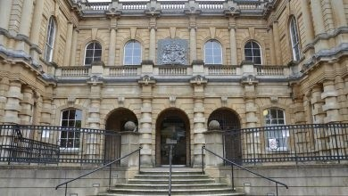 gray trading director jailed for fraud